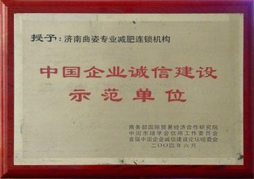 中国企业诚信建设示范单位