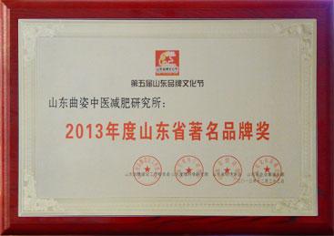 2013年度山东省著名品牌奖