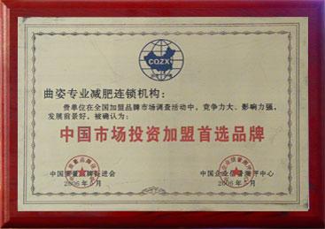 中国市场投资加盟首选品牌