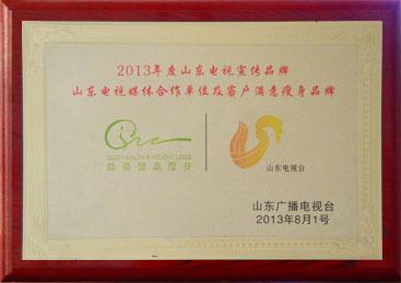 2013年度山东电视宣传品牌
