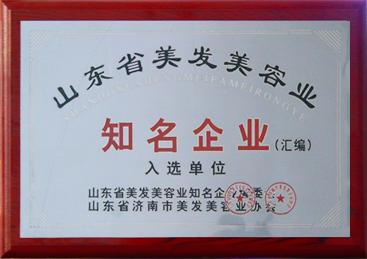 山东省美发美容行业知名企业